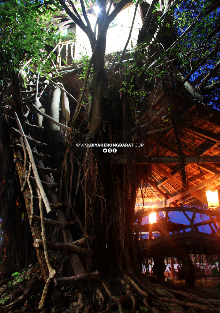 tree house gigantes island where to stay carles iloilo philippines