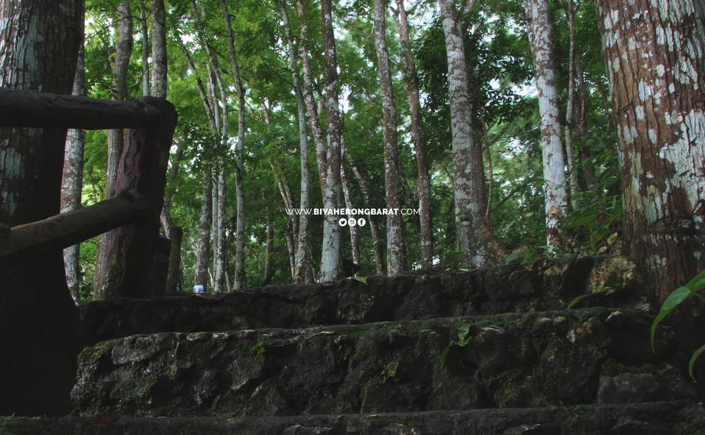 hiking suhot springs roxas city dumalag capiz paning-raon