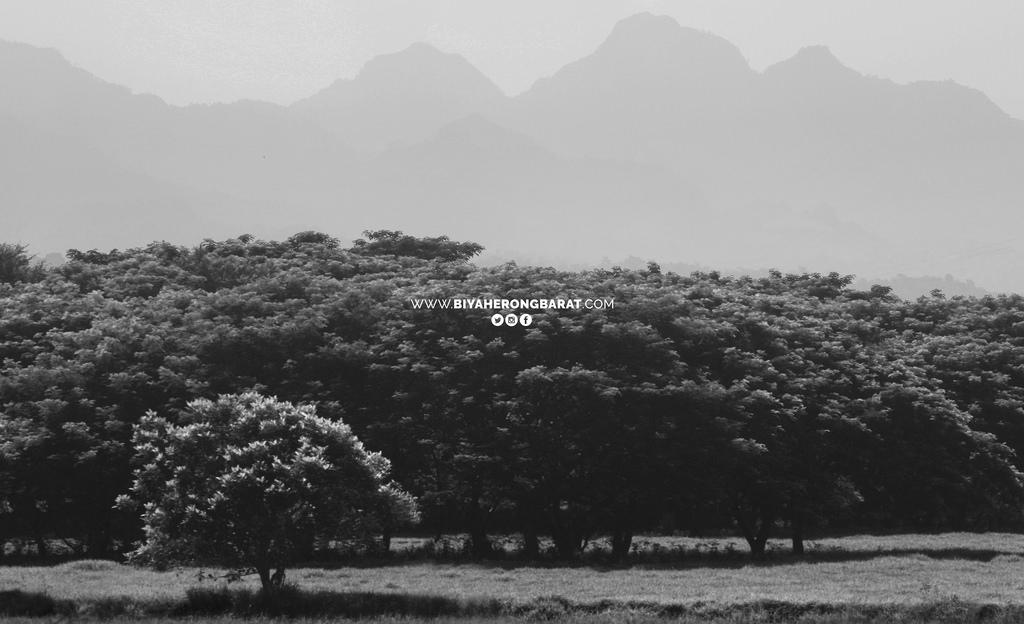 dinalupihan bataan mango trees mountains cycling philippines
