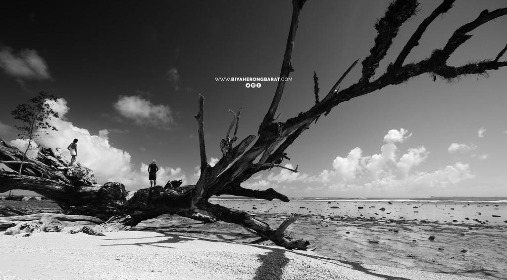 baganga davao oriental san victor island white sand beach