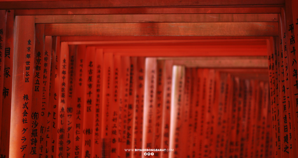 torii fushimi inari taisha kyoto japan temple kansai region cebu pacific travel